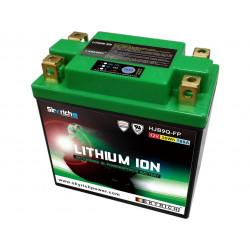 Batterie SKYRICH Lithium...