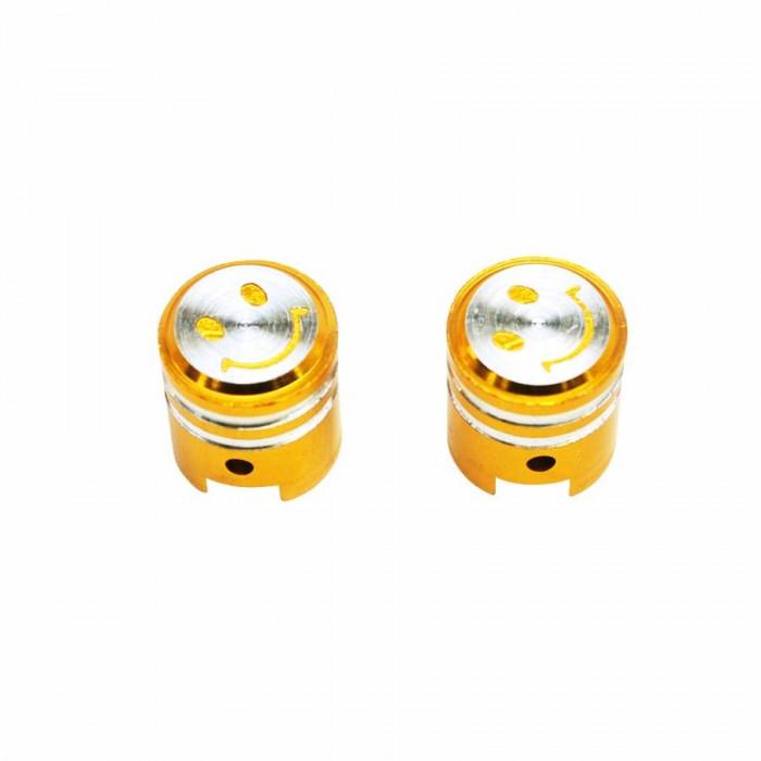 Bouchon de valve replay piston or (paire) vs
