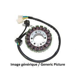 Stator ELECTROSPORT BMW G650